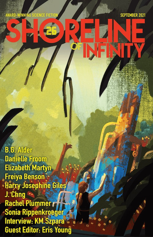 Shoreline of Infinity 26 front cover